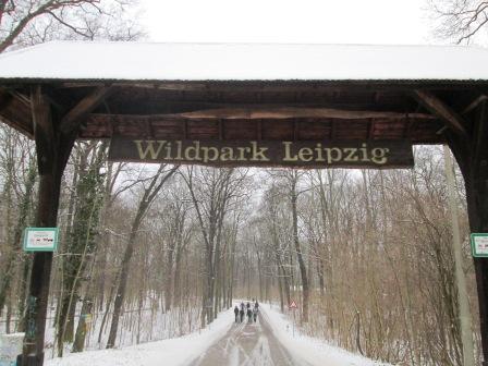 Wildpark Leipzig im Winter